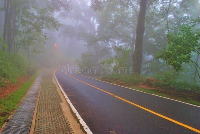 Strada della nebbia immagini stock libere da diritti