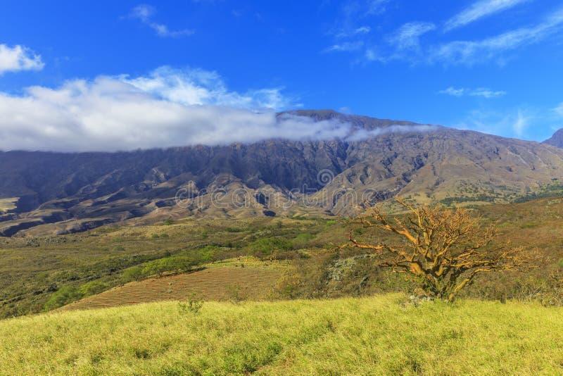 Strada della parte posteriore del vulcano di Haleakala, Maui, Hawai, U.S.A. fotografie stock libere da diritti