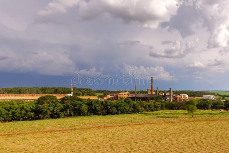 Strada della piantagione di canna da zucchero fotografie stock