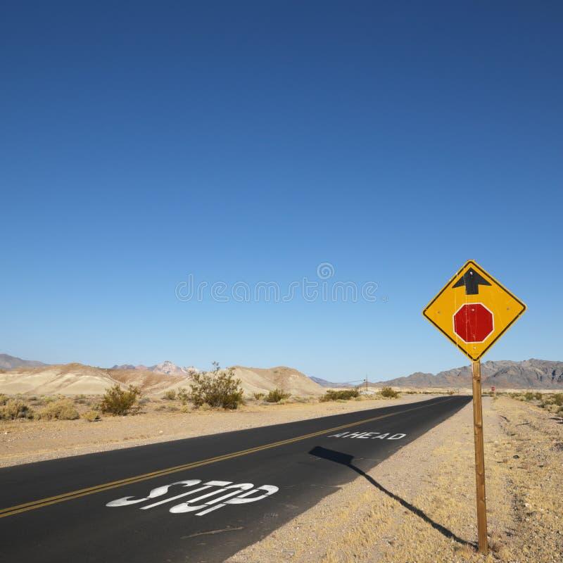 Strada in deserto. immagine stock