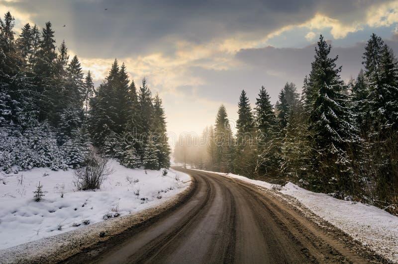 Strada di bobina attraverso la foresta dell'abete rosso di inverno immagine stock libera da diritti
