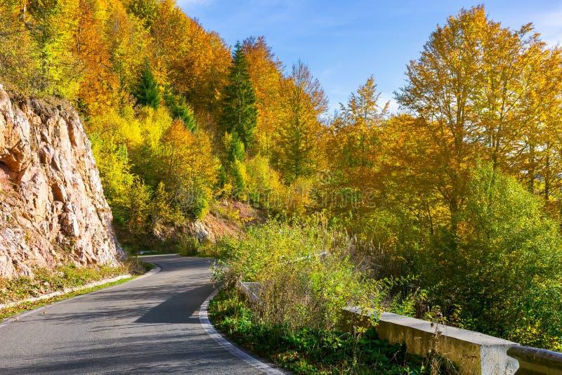 Strada di bobina attraverso le montagne boscose fotografia stock libera da diritti
