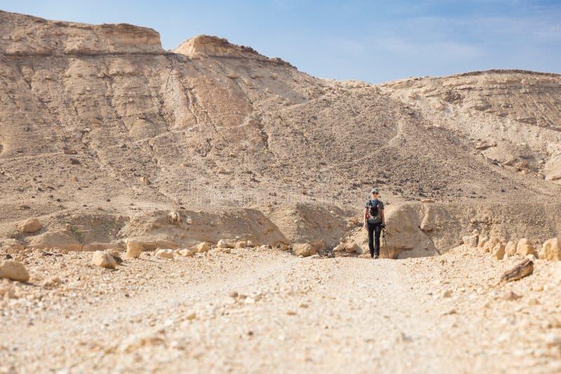 Strada di camminata del deserto della giovane donna fotografia stock
