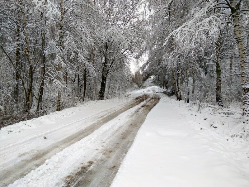 Strada di inverno in Russia immagine stock libera da diritti
