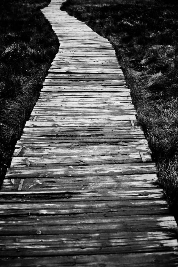 Strada di legno immagini stock