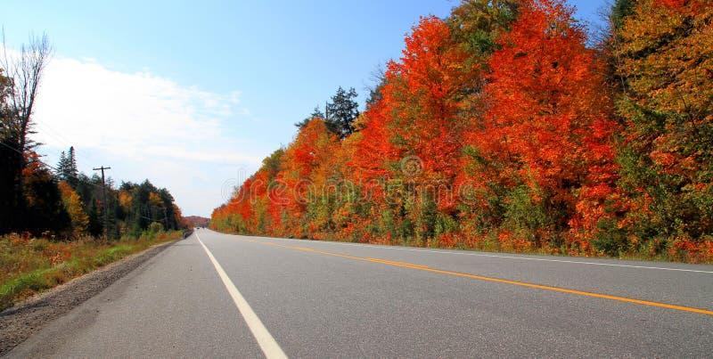 Strada di Ontario immagini stock