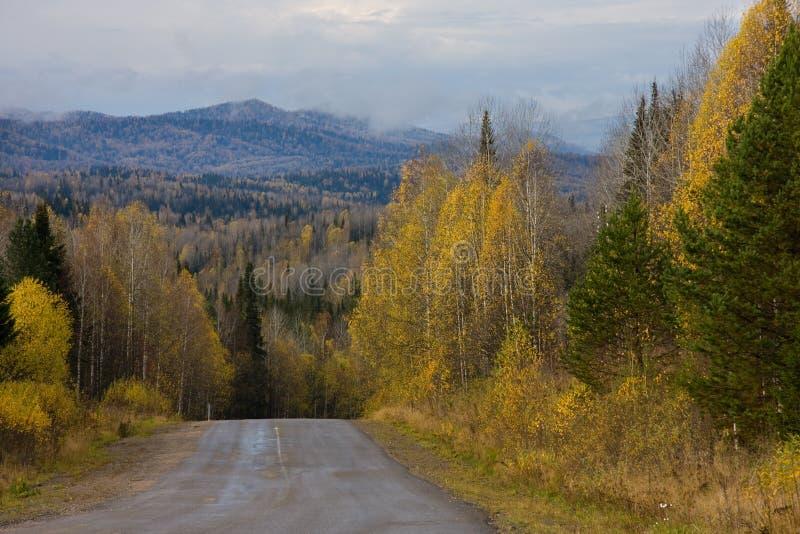 strada di paesaggio di autunno fotografia stock libera da diritti