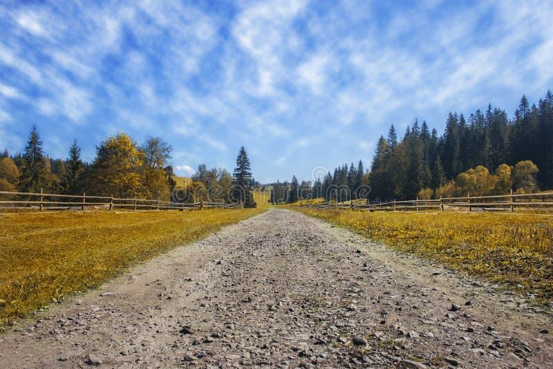 Strada di viaggio sul campo con l'erba di autunno ed il cielo blu gialli w immagini stock libere da diritti