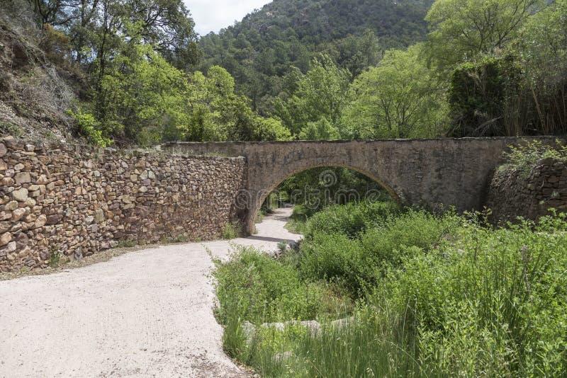 Download Strada E Ponte Nella Sierra De Espadan, Castellon, Spagna Immagine Stock - Immagine di alberi, verde: 117978429