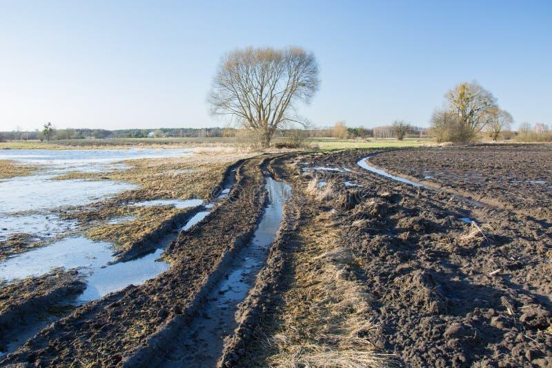 Strada fangosa d'avvolgimento attraverso i campi sommersi dopo pioggia, l'albero sull'orizzonte ed il cielo immagini stock libere da diritti