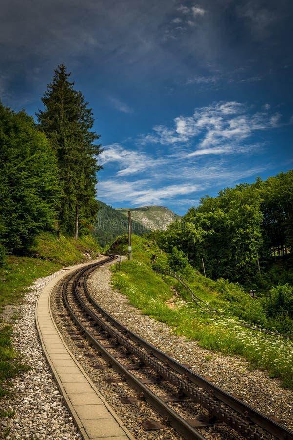 Strada ferrata di ferrovia a cremagliera alpina a Schafberg in austriaco fotografia stock
