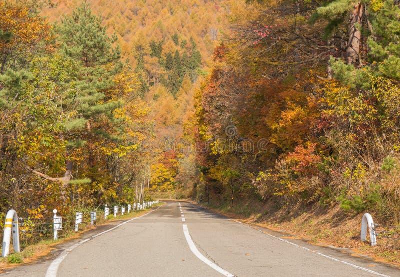 Strada fra la foresta di autunno nella linea strada - Bandai, Fukushima, Giappone dell'oro Bandai-san fotografia stock