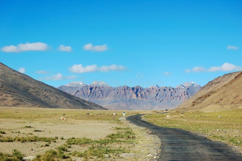 Strada himalayana immagine stock libera da diritti
