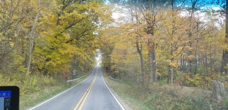 Strada Michigan di caduta fotografia stock