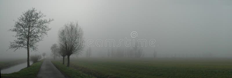 Strada nebbiosa immagine stock libera da diritti