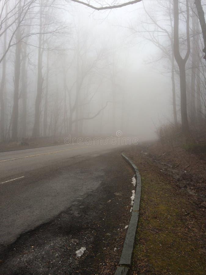 Strada nebbiosa immagini stock libere da diritti