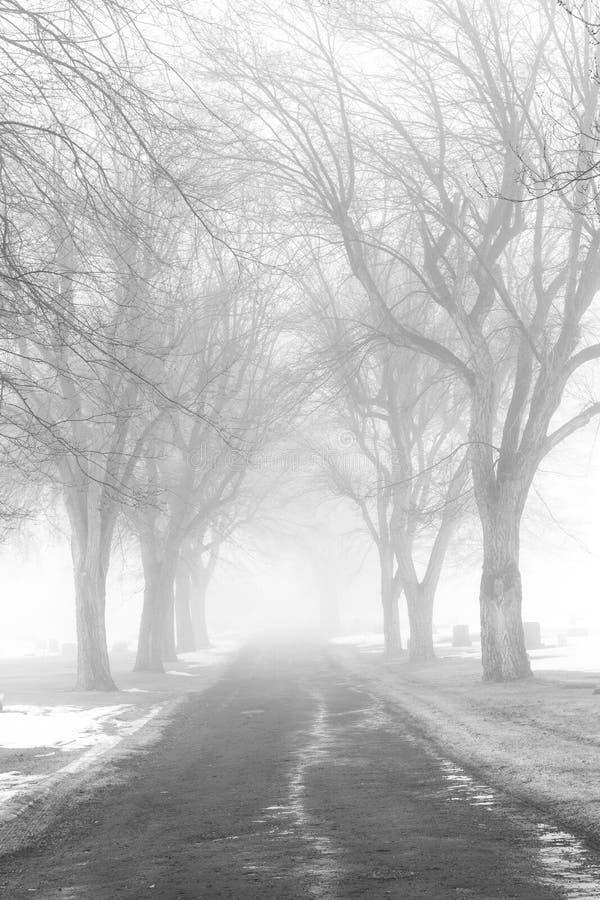 Strada nebbiosa del cimitero immagine stock