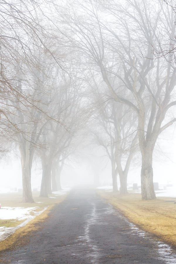 Strada nebbiosa del cimitero fotografia stock