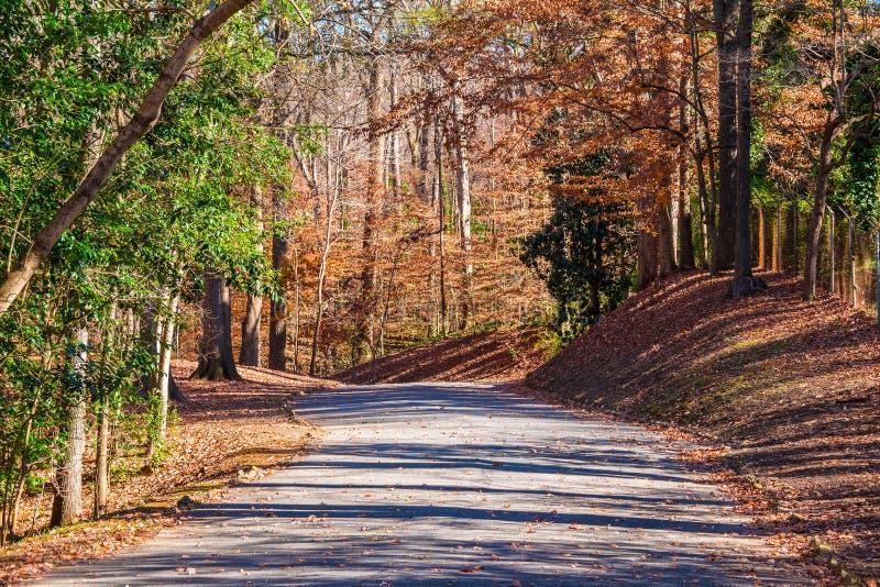 Strada nel parco di Lullwater, Atlanta, U.S.A. fotografia stock