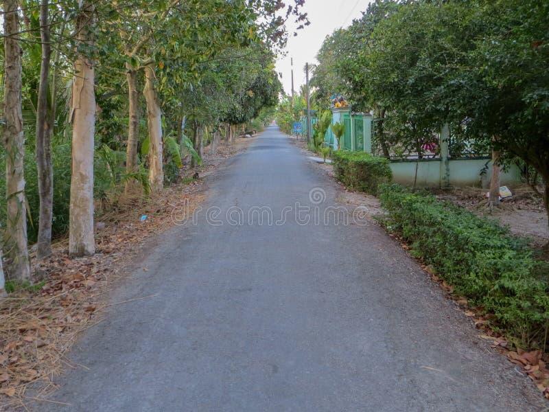 Strada nel villaggio fotografia stock