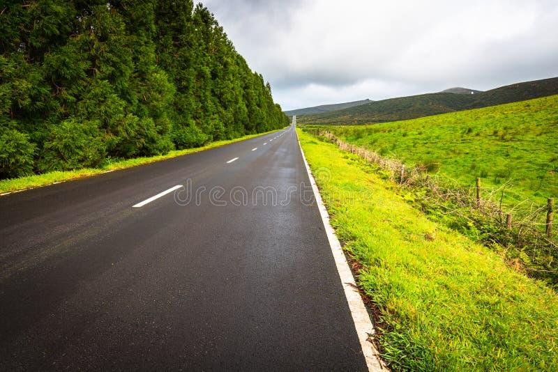 Strada nell'isola del Flores, Azzorre, Portogallo fotografie stock
