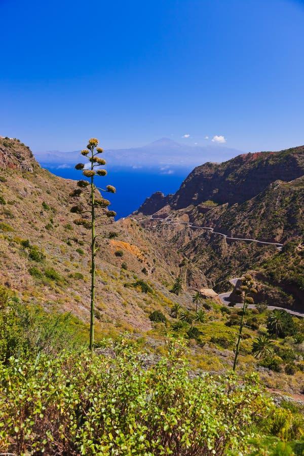 Strada nell'isola di Gomera della La - canarino immagini stock
