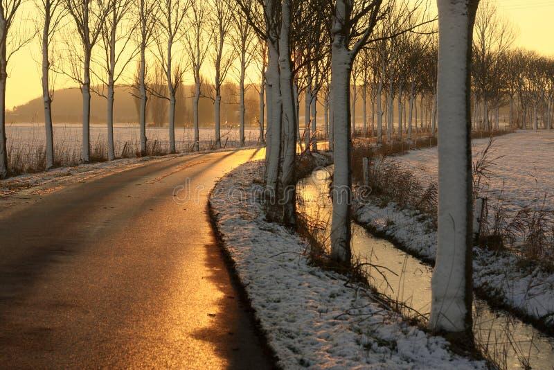 Strada nell'orario invernale fotografia stock