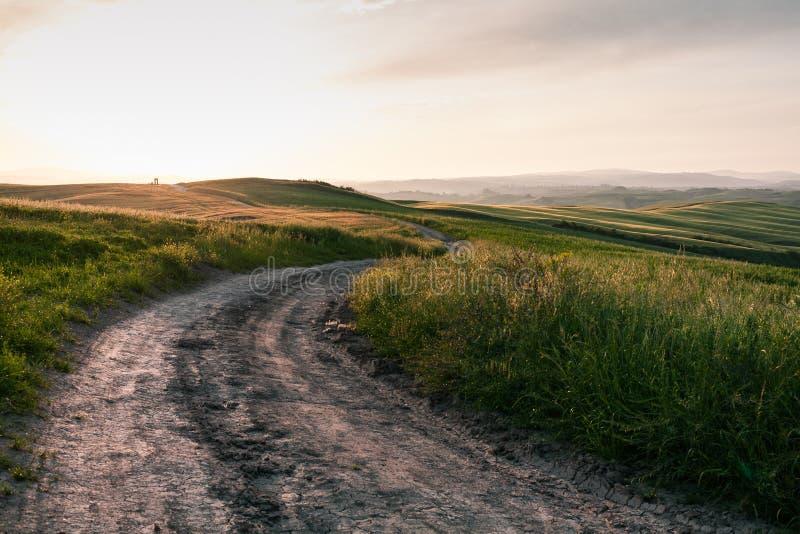 Strada nella campagna della Toscana al tramonto vicino a Siena fotografia stock libera da diritti