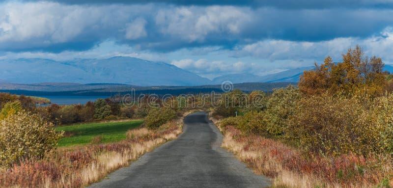 Strada nella tundra fotografia stock libera da diritti