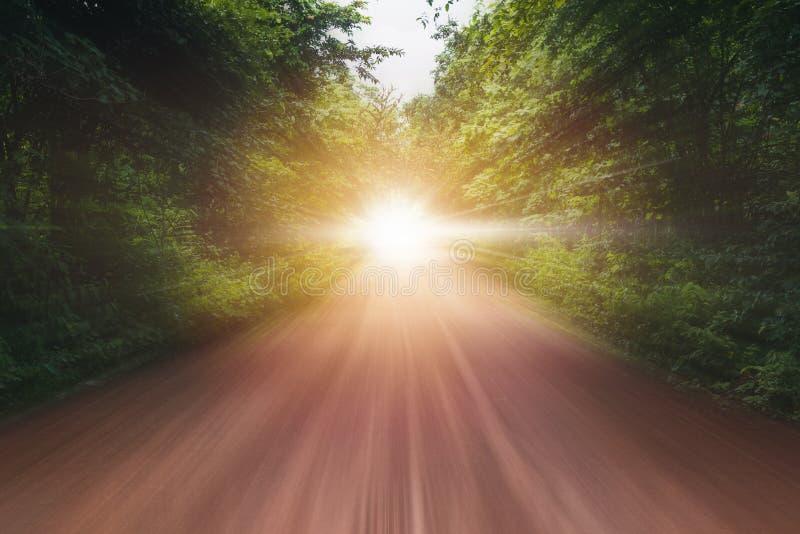 Strada nella velocità di moto nella foresta naturale alla luce di giorno soleggiato immagine stock libera da diritti