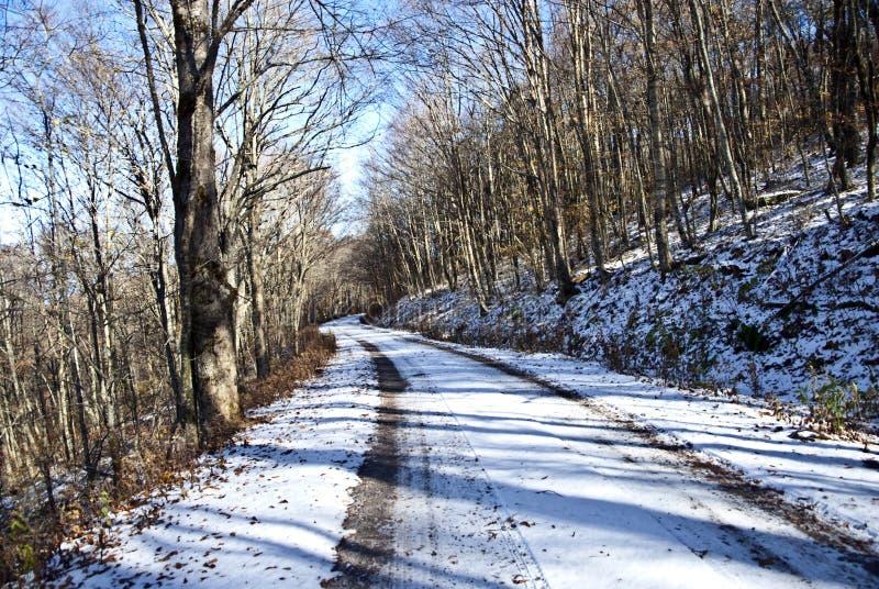 Strada/neve di inverno immagine stock