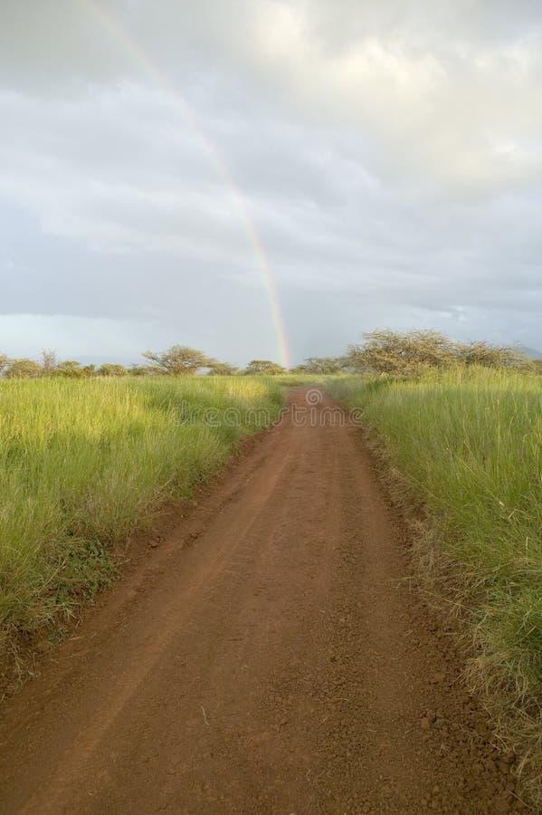 Strada non asfaltata ad un arcobaleno attraverso i pascoli verdi di tutela della fauna selvatica di Lewa nel Kenya del nord, Afri immagine stock libera da diritti