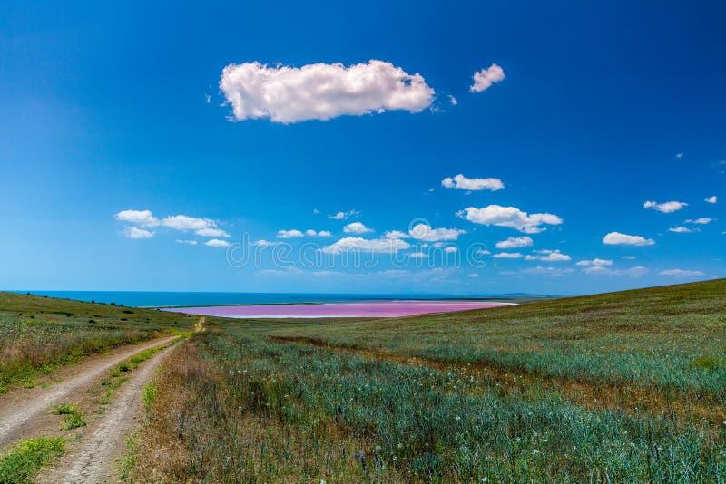 Strada non asfaltata al lago rosa fotografie stock libere da diritti