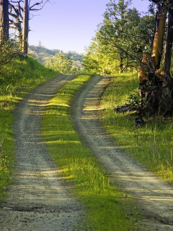 Strada non asfaltata del paese immagini stock