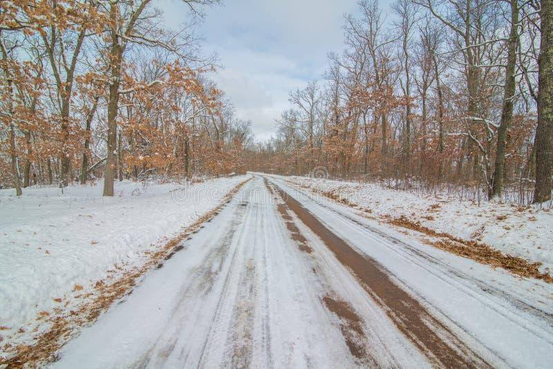 Strada non asfaltata diritta rurale nell'inverno nevoso circondata dalla foresta immagini stock