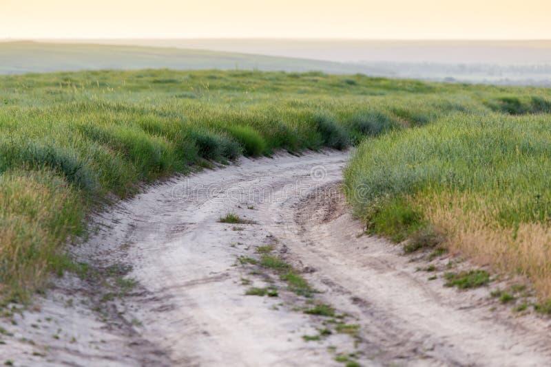 Strada non asfaltata in natura fotografia stock