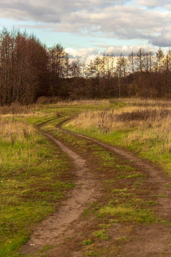 Strada non asfaltata nel campo sull'erba immagine stock libera da diritti