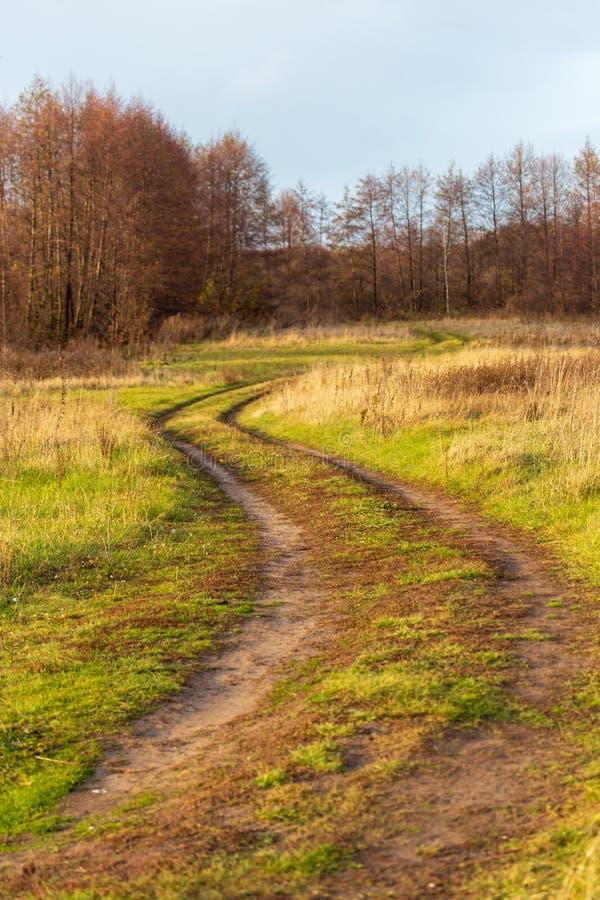 Strada non asfaltata nel campo sull'erba immagini stock libere da diritti