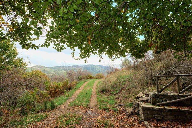 Strada non asfaltata nel parco di Nebrodi, Sicilia fotografia stock