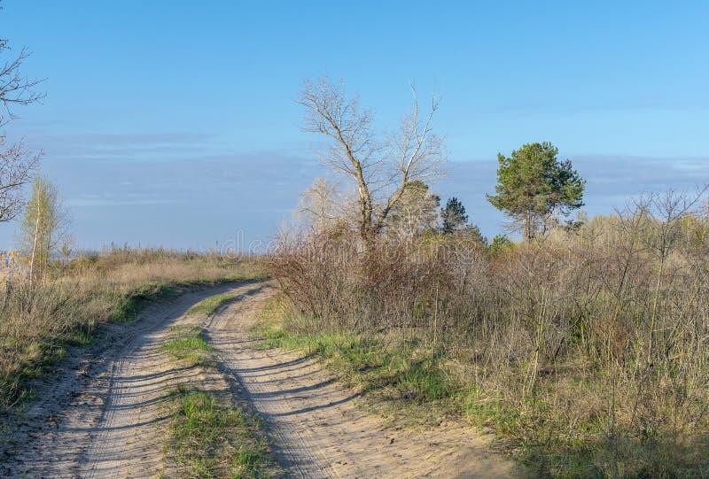 Strada non asfaltata nella steppa fotografia stock libera da diritti