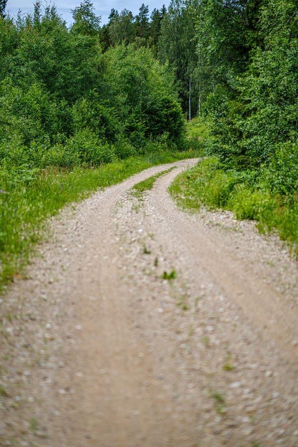 strada non asfaltata romantica della ghiaia in campagna nella sera verde di estate fotografie stock libere da diritti