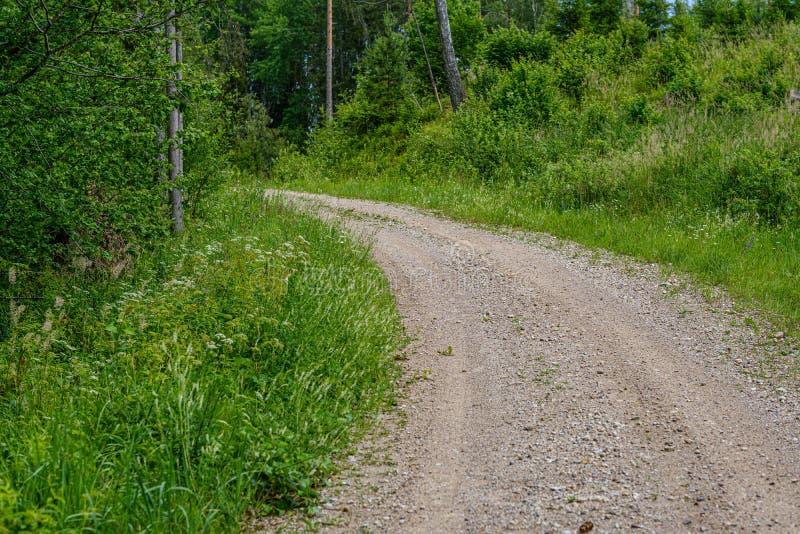 strada non asfaltata romantica della ghiaia in campagna nella sera verde di estate immagini stock