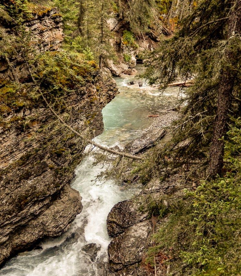 Strada panoramica Banff Canada dei giacimenti di ghiaccio della cascata fotografie stock