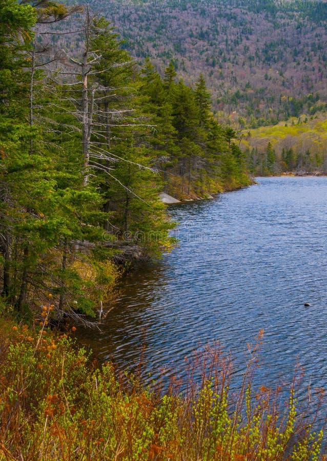 Strada persa dello stagno del castoro, fiume, Woodstock NH 03262 immagini stock