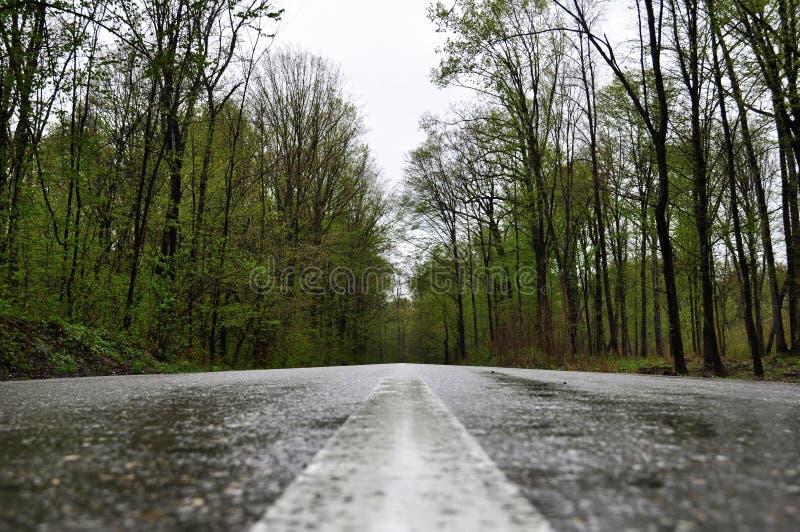 Strada piovosa in Valeni fotografie stock