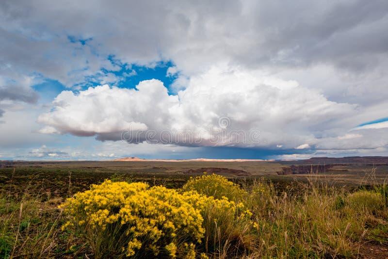 Strada principale americana ad ovest, vasti campi, pioggia nella distanza fotografia stock