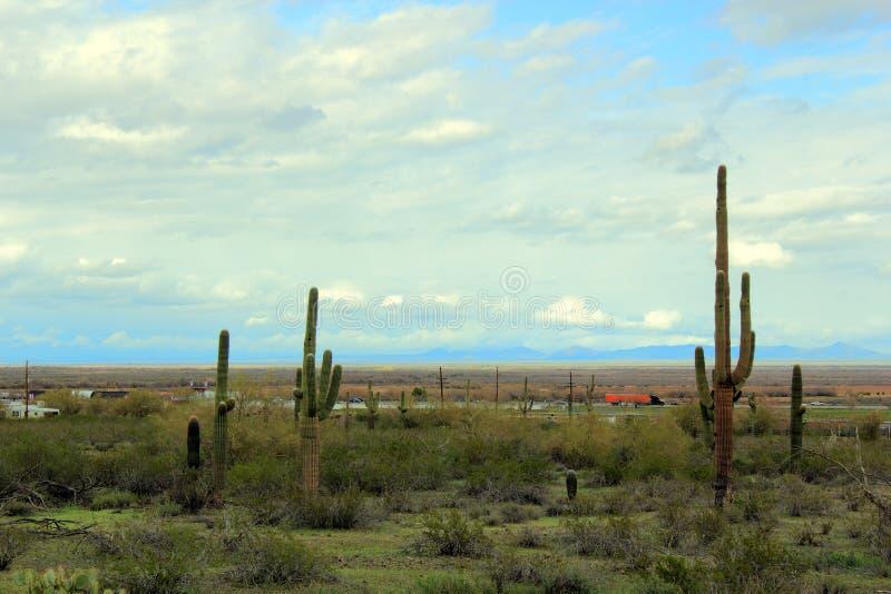 Strada principale del deserto dell'Arizona fotografia stock