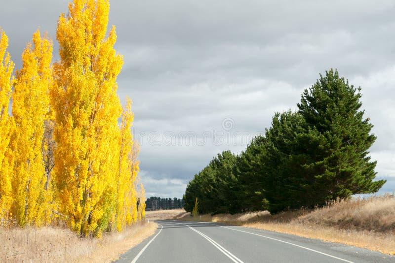 Strada principale della Nuova Inghilterra immagini stock libere da diritti