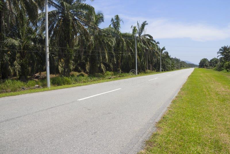 Strada principale rurale della strada per il viaggio dell'azionamento di velocità fotografia stock libera da diritti