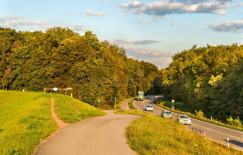 Strada principale in una foresta. La Germania immagine stock libera da diritti